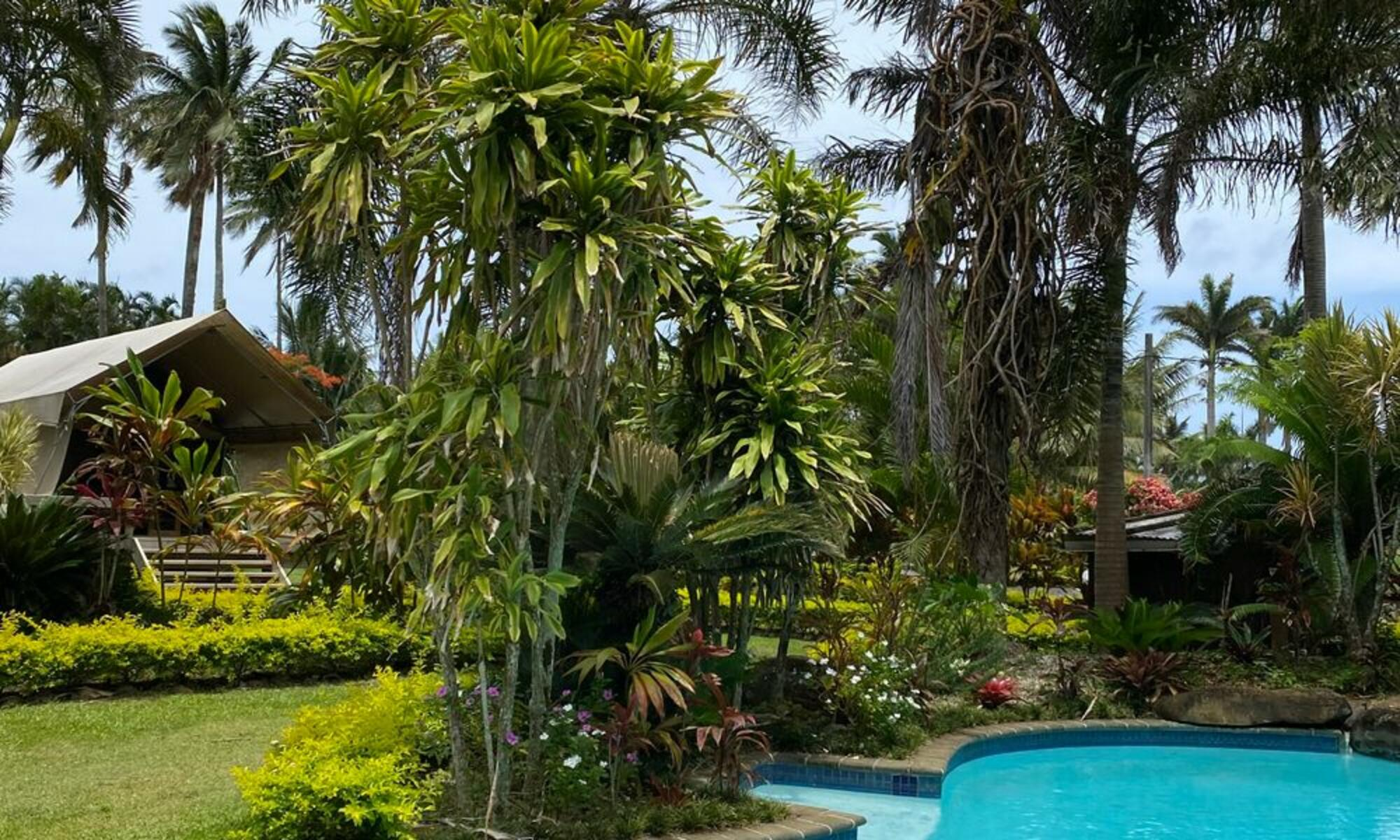 Ikurangi Retreat - Tropical Garden
