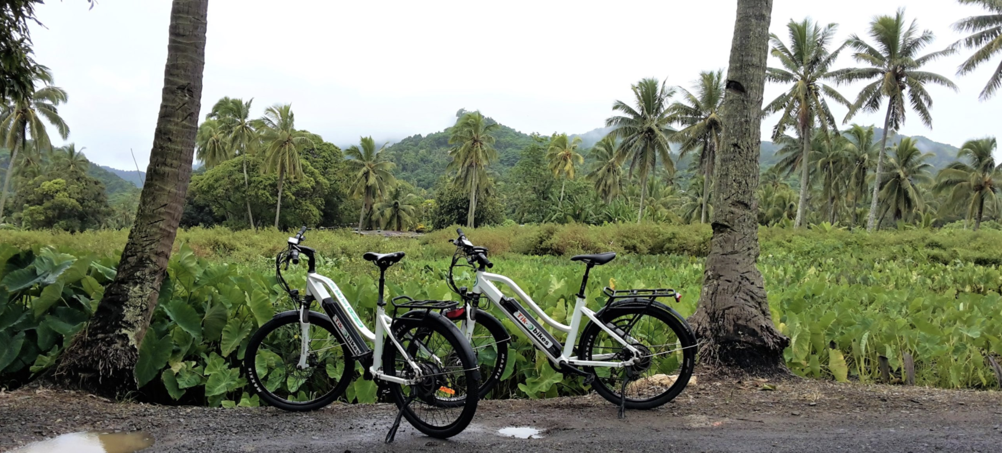 Rent e-Bikes with Tik-e Tours in Rarotonga
